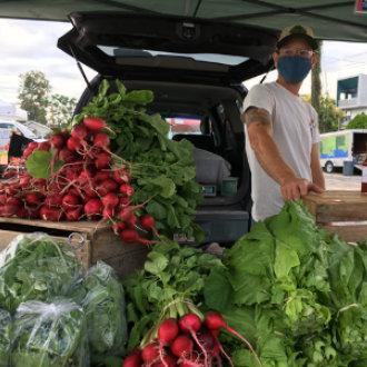 vendor-major-acre-farm-ellis-330x330.jpg